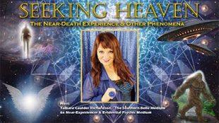SAI-seeking_heaven_zoom_promo_banner